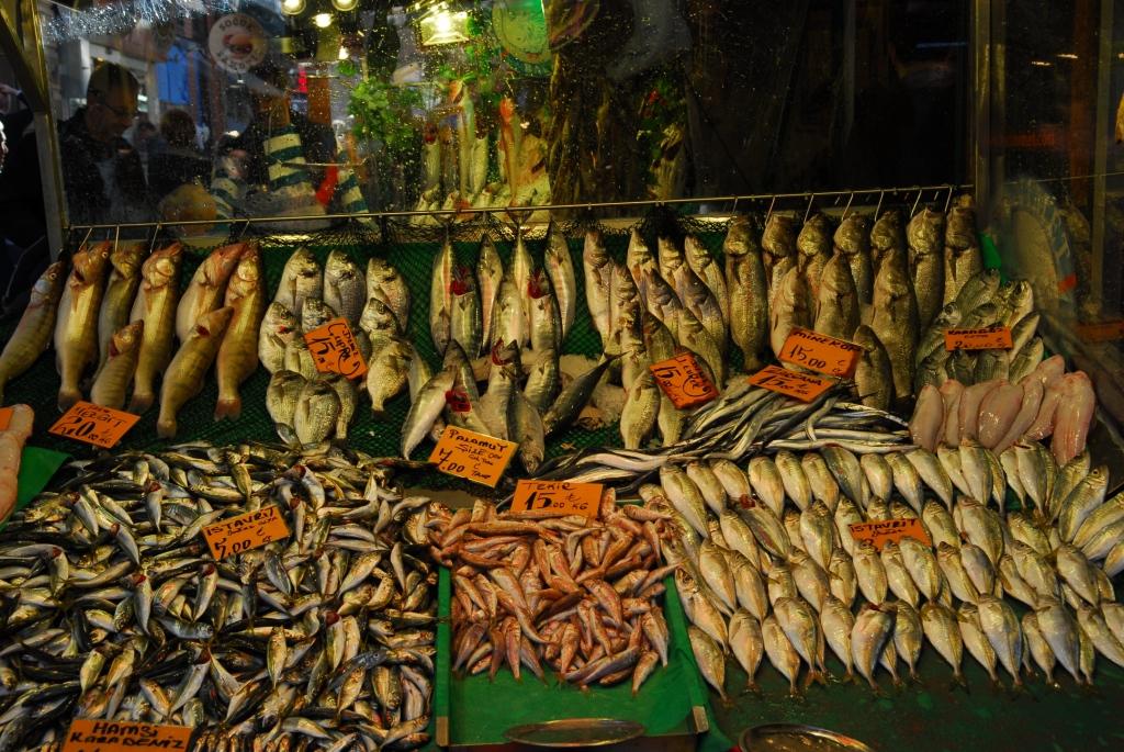 Frische Fische, allerdings in Kadaköy