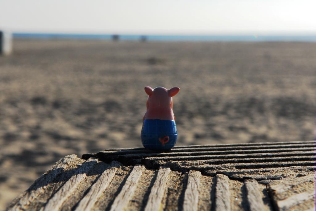 Gustav blickt sehnsüchtig auf das Meer
