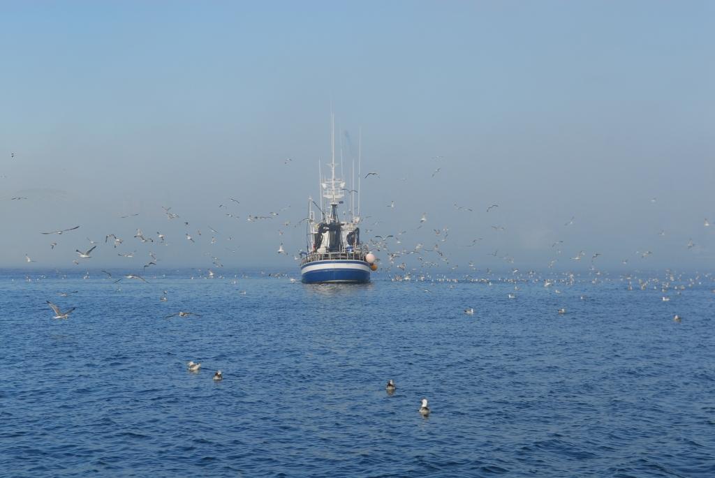 Fischer im Nebel vor A Coruna