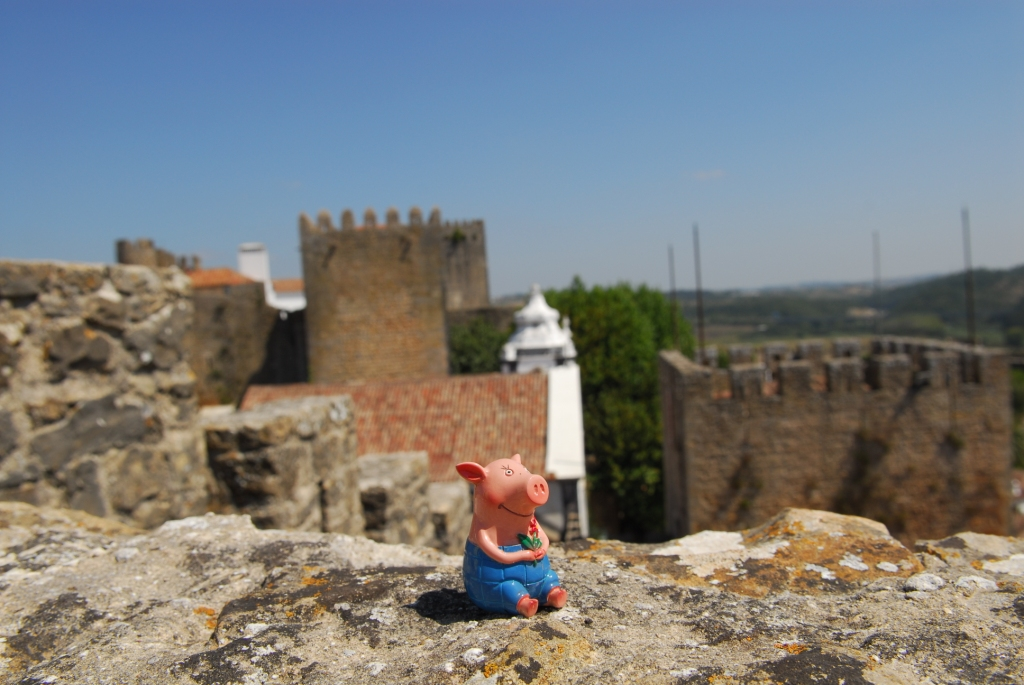 Gustav in Obidos