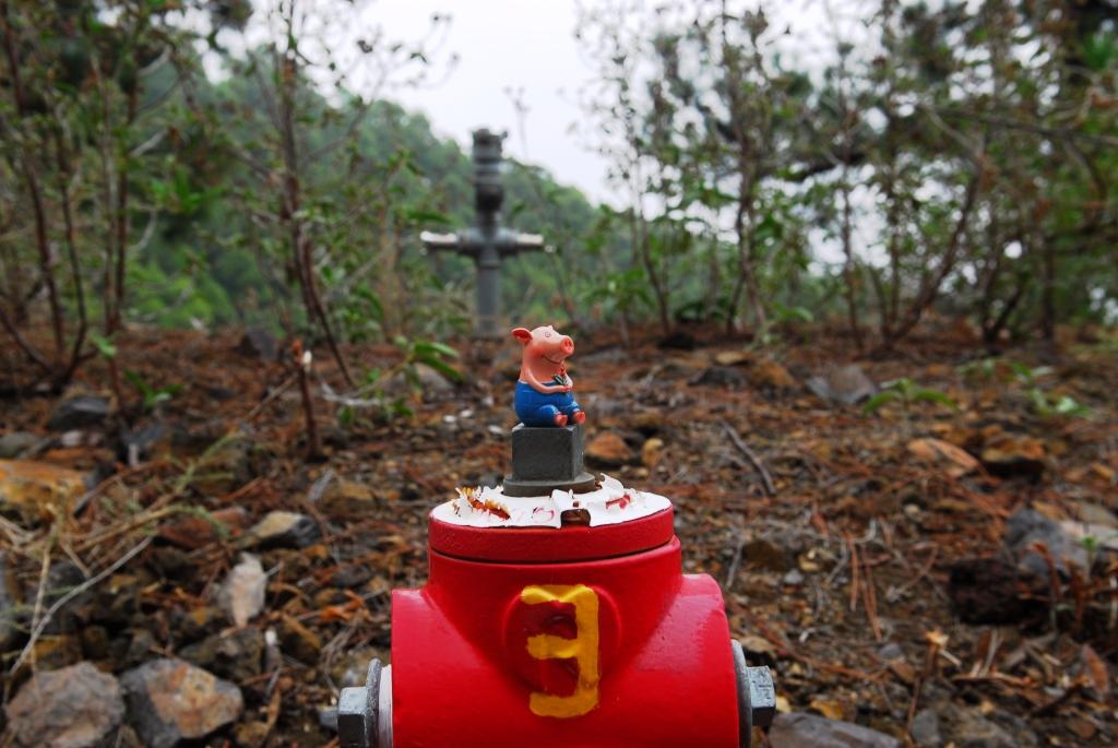 Gustav, der Feuerwehrmann