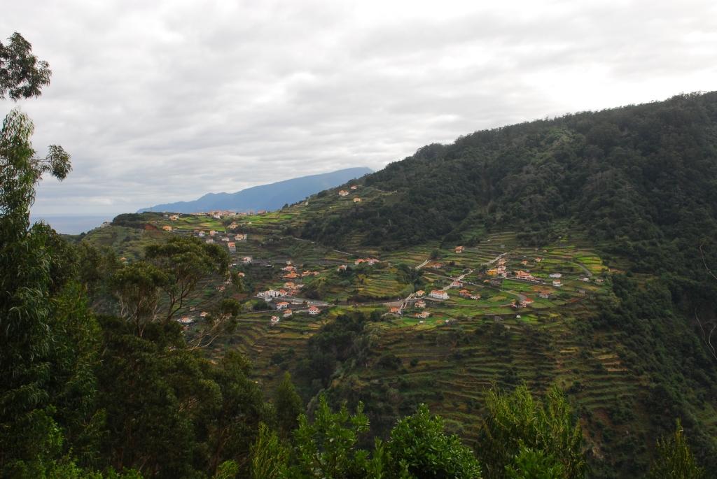 Felder bei Porto Moniz