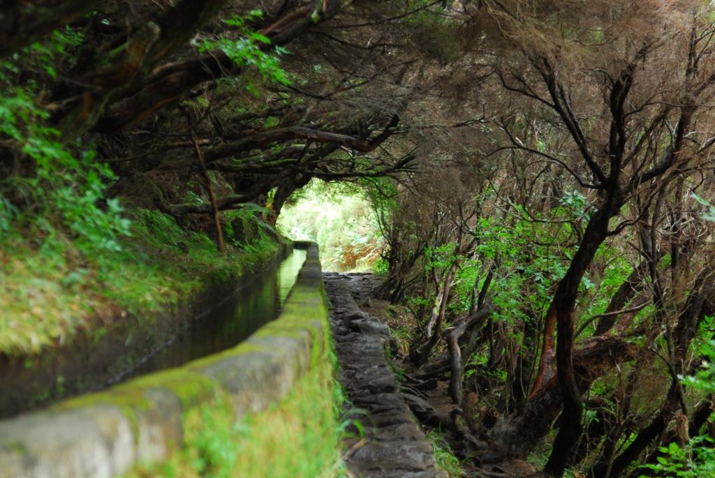 Levadawanderweg in Rabacal