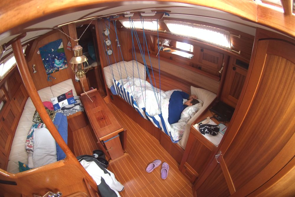 Steffi sleeping inside a noisy ship