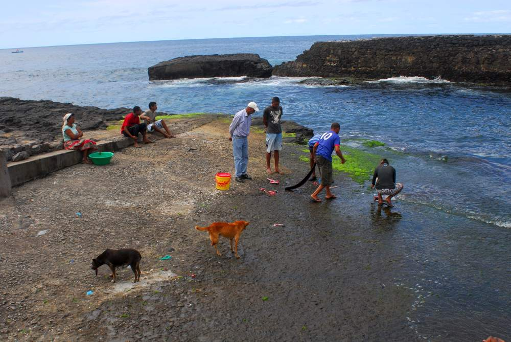 Fischmarkt Santo Antao (6)