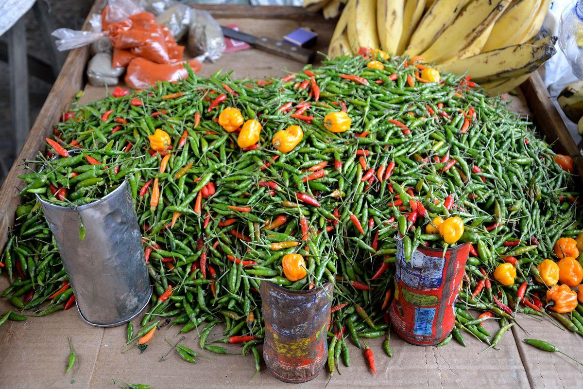 Pimenta oder Chili