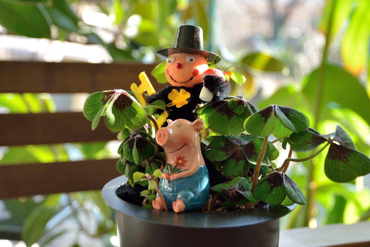 Gustav wünscht ein Gutes Neues Jahr!