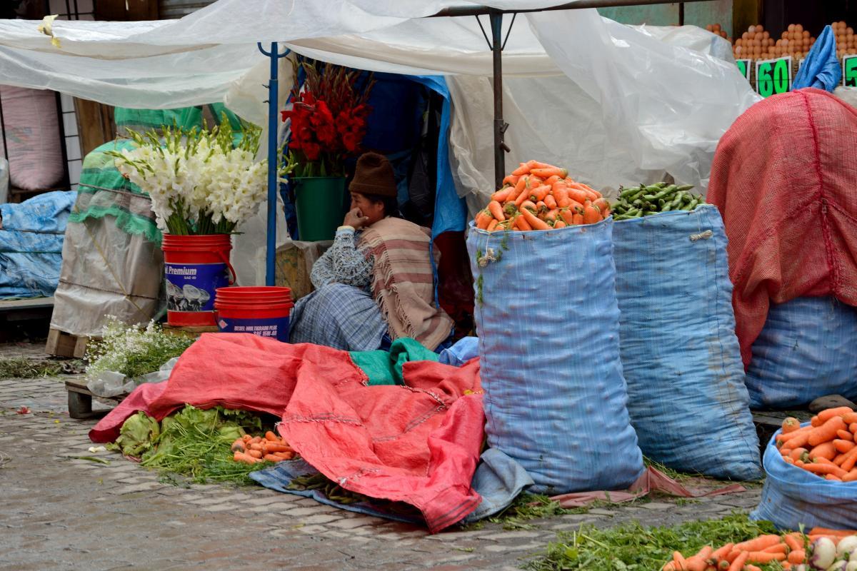 Marktfrau in El Alto