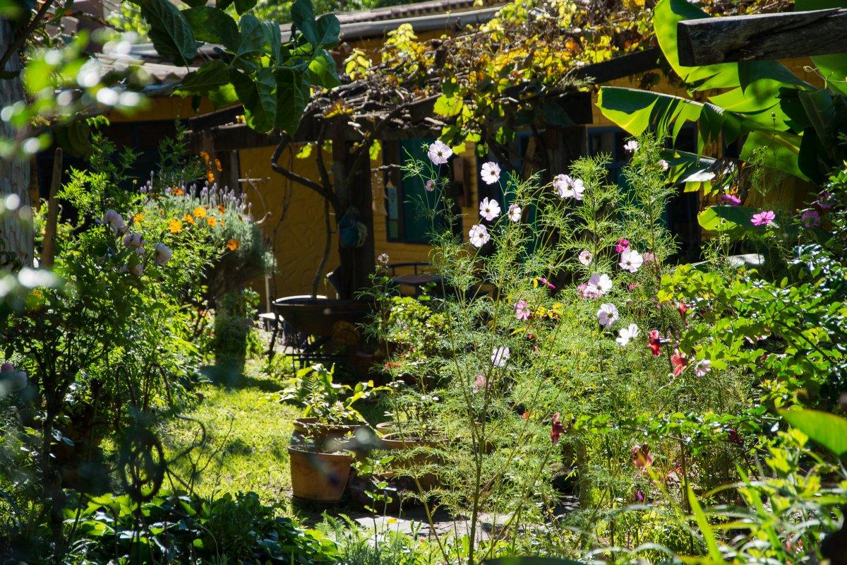 Im Garten des Landhaus