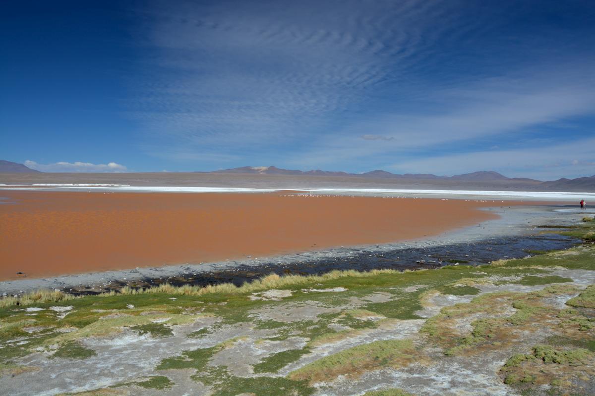 Laguna Colorada, Uyuni Tour von Tupiza aus