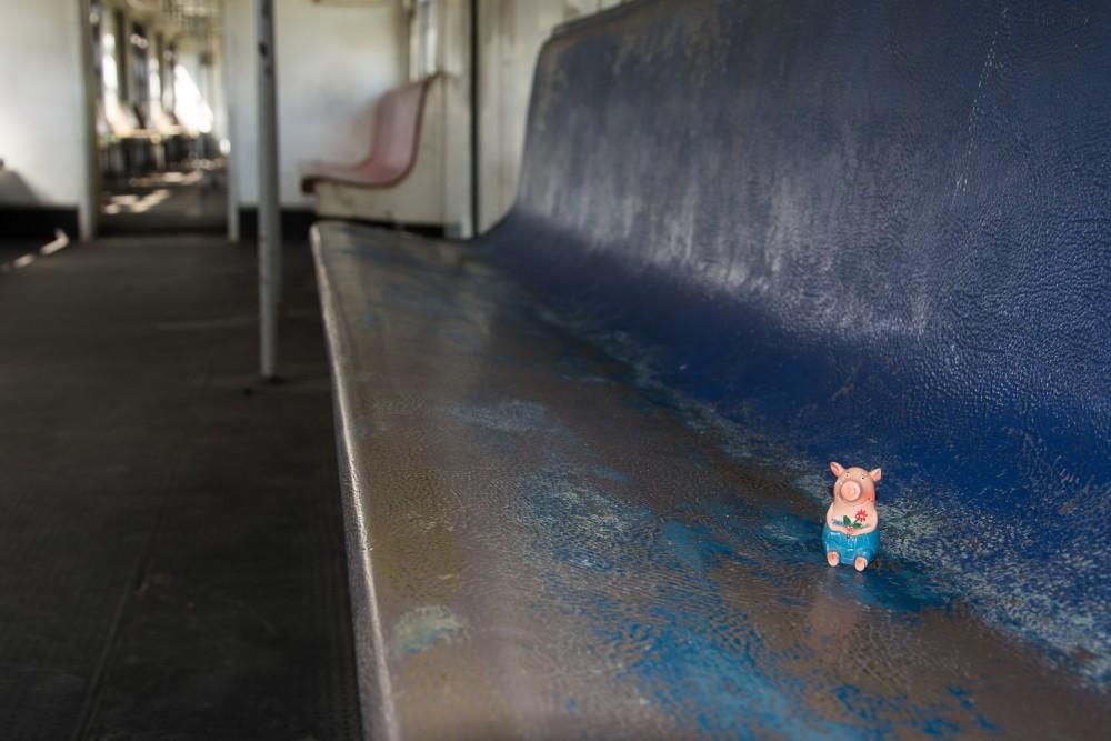 Gustav im Zug nach Joao Pesso