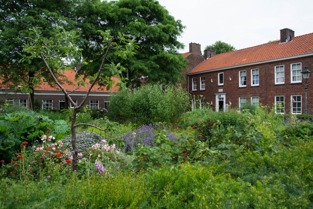 Hertogenbosch | Segeln mit Yemanja