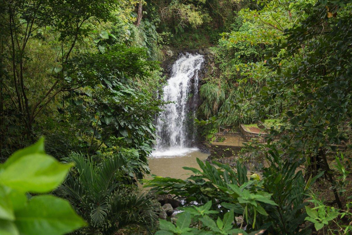 Annandale Waterfall Grenada