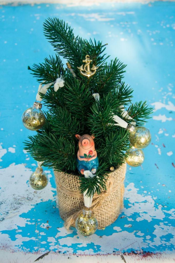Unser Glücksbringer Gustav im Weihnachtsbaum