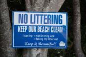 Was du für die Sauberkeit des Meeres auch an Land tun kannst