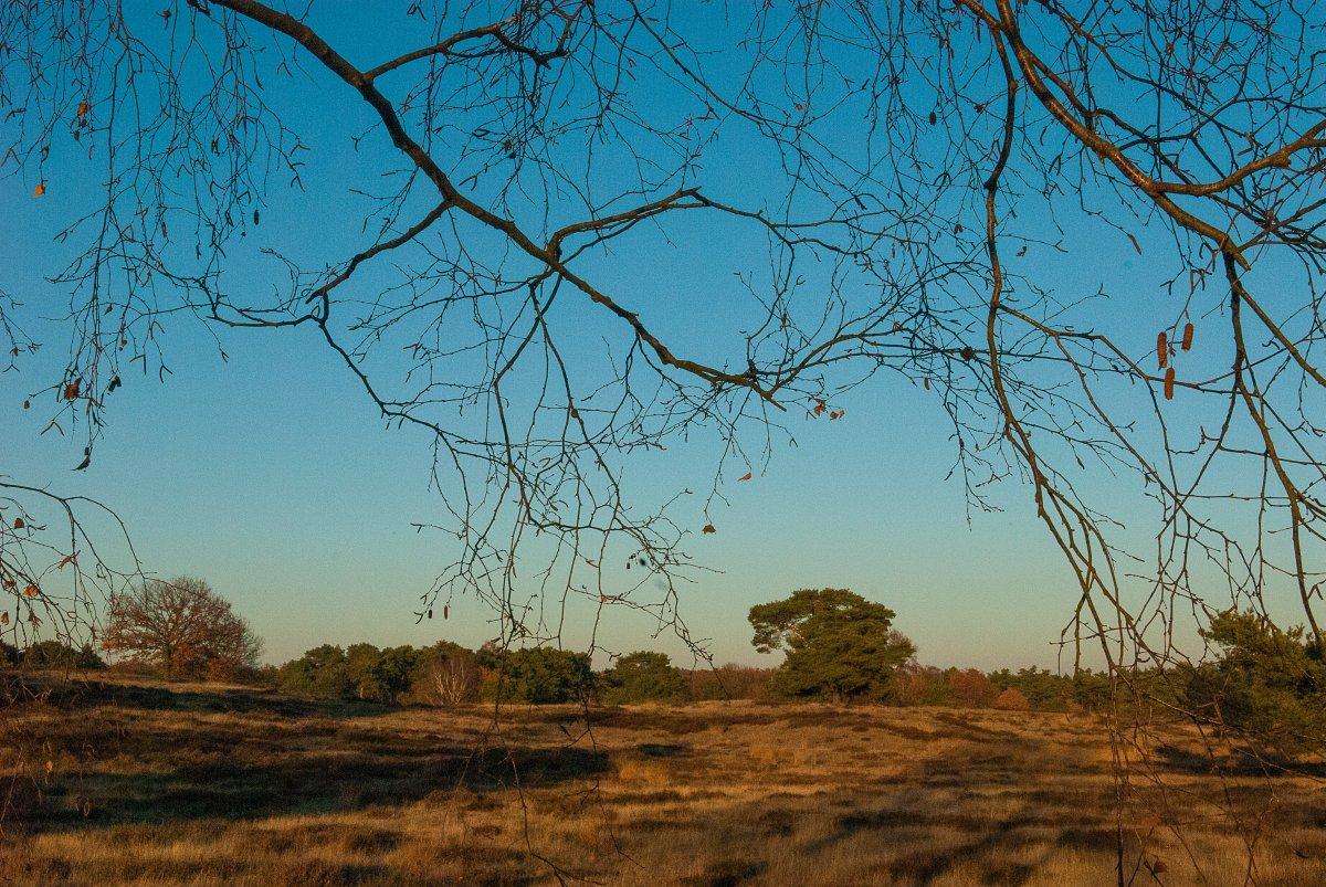 Westruper Heide - Segeln mit Yemanja