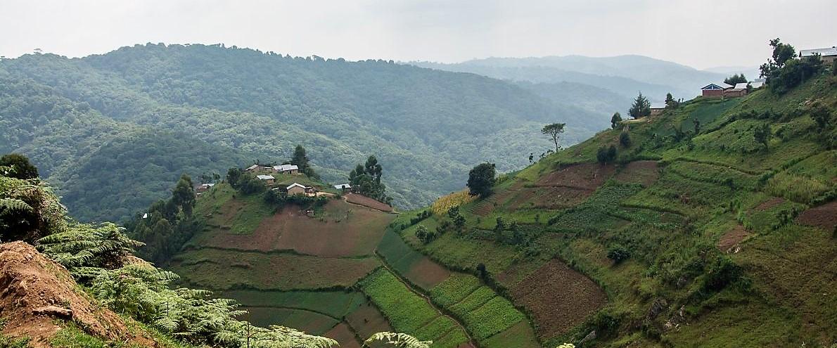 Bei Rushaga, Uganda, www.sy-yemanja.de