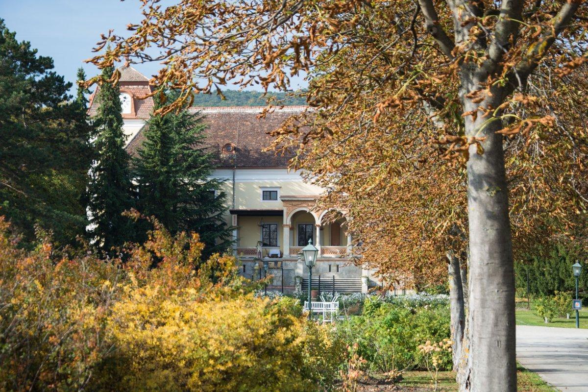Quellen in Baden bei Wein - Heimat entdecken mit www.sy-yemanja.de